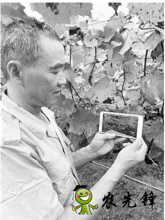 无锡市先行先试加快发展智慧农业,已建设农业物联网应用点近400个