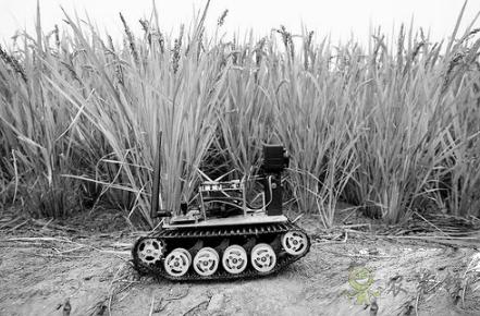"""iDror智能农业物联网机器人""帮助农民解决实际问题"