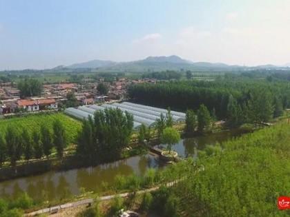 济宁聚焦乡村振兴 加快现代农业发展