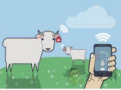 物联网应用在农业领域中的价值探讨