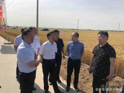 延津县国家现代农业产业园