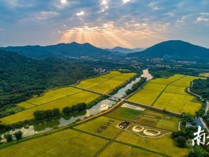 11个现代农业项目在广州从化动工