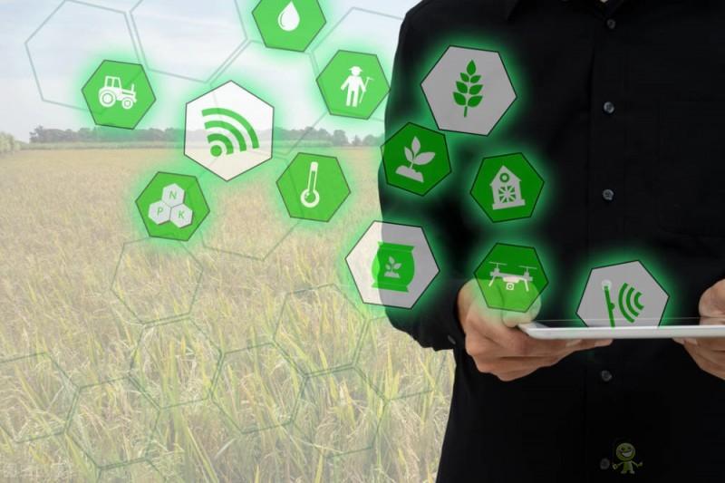 农业物联网格局形成的条件分析概述