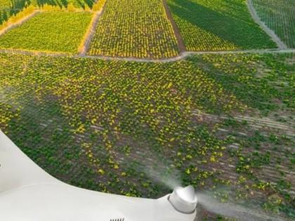 《2020-2024年全球智能农业装备行业深度市场调研及重点区域研究报告》
