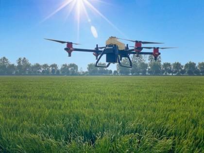 大圹圩农场智慧农业的高标准农田