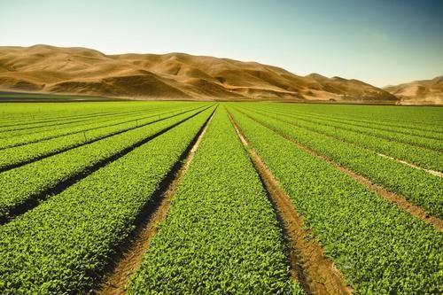 智慧农业物联网化中LTE扮演者什么角色