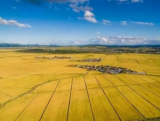 令人大开眼界的世界领先6大农业新模式
