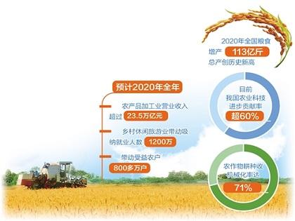 2020年全国粮食增产113亿斤再创历史新高