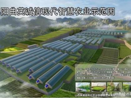 阳曲县精品农业是如何打造的?