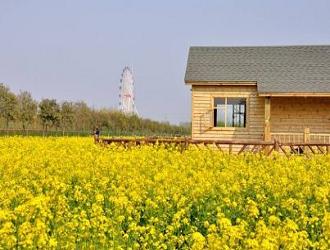 """8种最新的农业模式,哪一个会成为下一个""""农业风口""""呢?"""