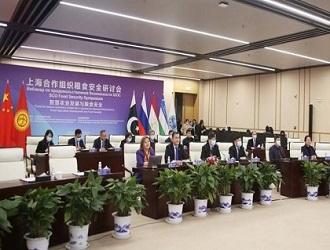 3月10日举行上海合作组织粮食安全视频研讨会