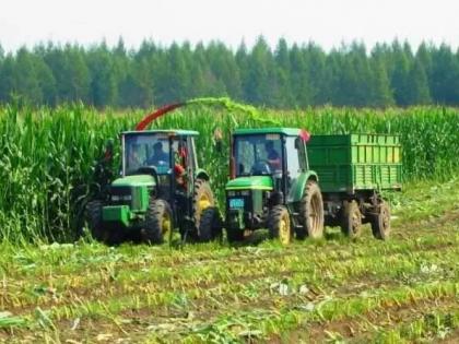 今年新疆计划实施粮改饲项目111.5万亩