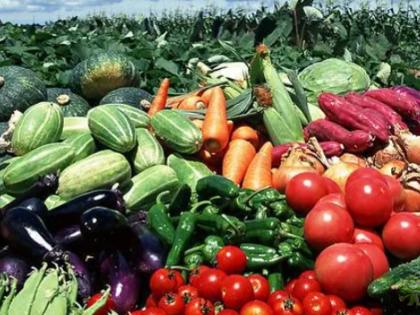 三部门发文,政府采购支持乡村产业振兴