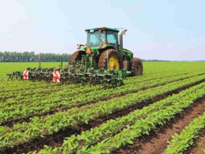 正在进行有机大豆田间除草作业的智能除草机器人