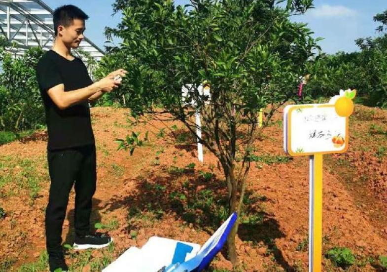 四川青神:打造智慧气象数字果园 助力农业产业现代化