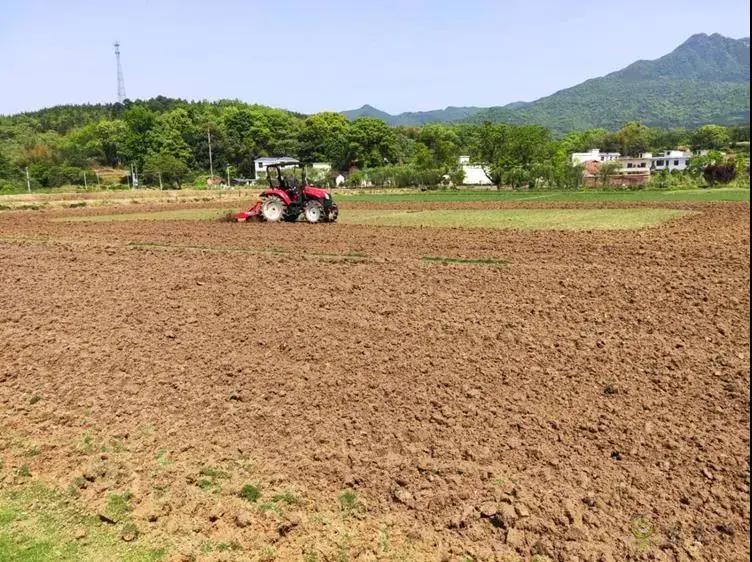"""安徽打造高标准农田""""升级版"""""""