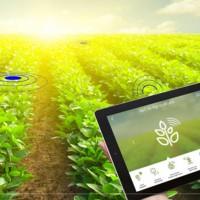 数字化高标准农田