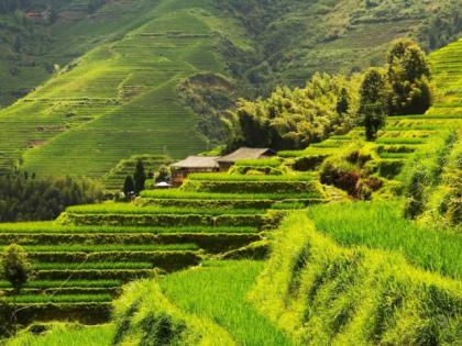 丘陵山区农业拿什么实现机械化