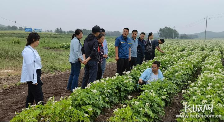 河北:打造坝上地区农业高效节水新模式