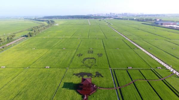 赵春江院士:解决农村劳动力短缺,北京可发展无人化农场