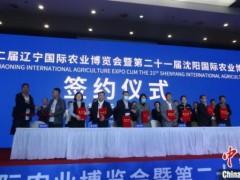 辽宁沈阳国际农业博览会开幕现场签约额超200亿元