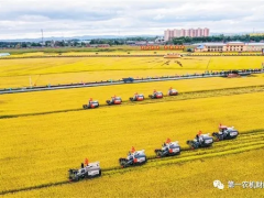 农机产业如何迎接未来:爬坡过坎靠创新