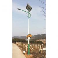 太阳能捕虫器一体灯