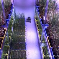 植物工厂智能控制系统